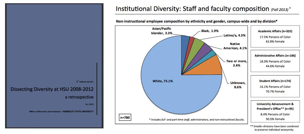 Diversity Reports